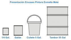 Presentación Envases Pintura Esmalte Mate Pinytex